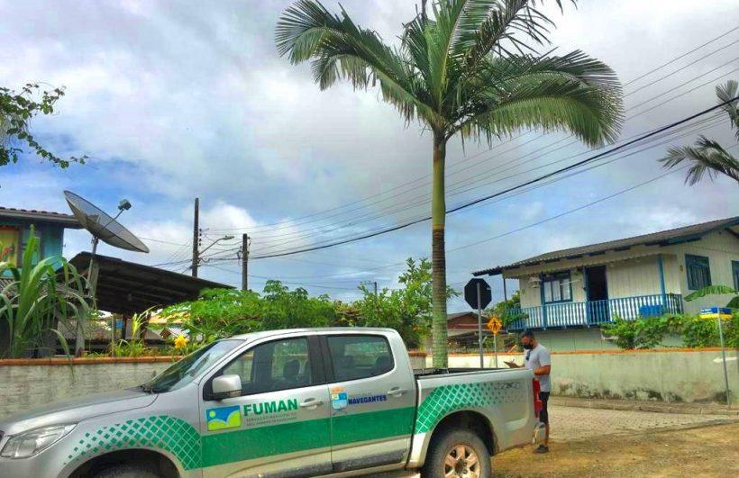 Fundação do Meio Ambiente inicia o Censo Florestal Urbano